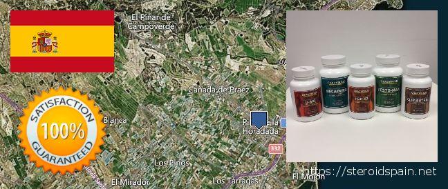 Where to Buy Anabolic Steroids online Pilar de la Horadada, Spain
