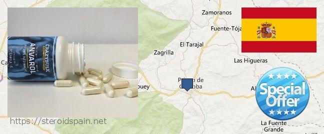 Where to Buy Anabolic Steroids online Priego de Cordoba, Spain